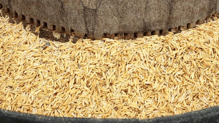 Rice Mill