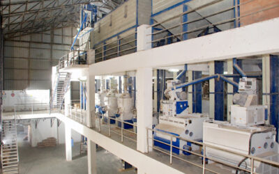 A Complete Solution of Rice Mill Machineries