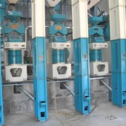 Rice Mill Dryer Manufacturer in Kerala